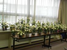 北海道の大自然 花は愛
