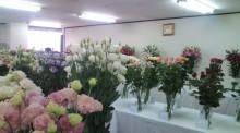 花の命 人のこころ-20100722125356.jpg