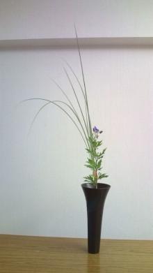 花の命 人のこころ-20100818180230.jpg