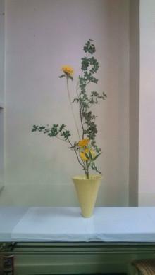 花の命 人のこころ-F1000385.jpg
