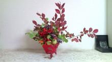 花の命 人のこころ-F1000388.jpg