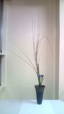 花の命 人のこころ-F1000411.jpg