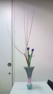 花の命 人のこころ-F1000425.jpg