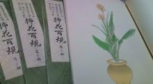 花の命 人のこころ-F1000426.jpg