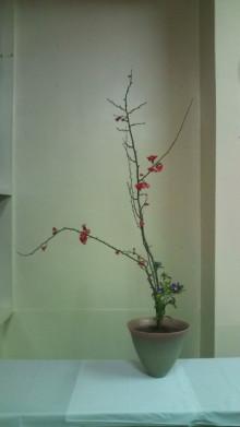 花の命 人のこころ-F1000428.jpg