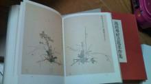 花作家 森直子の 花のいのち 人のこころ-20110615213722.jpg