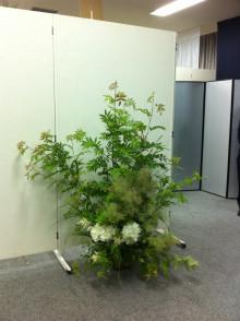 花作家 森直子の 花のいのち 人のこころ