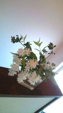 花作家 森直子の 花のいのち 人のこころ-20110621153626.jpg